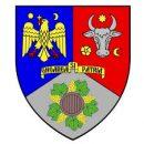 """Consiliul Judeţean Vrancea finalizează proiectul CRESC în Vrancea! – Copiii remigraţi în Vrancea- educaţi, sprijiniţi, consiliaţi!"""""""