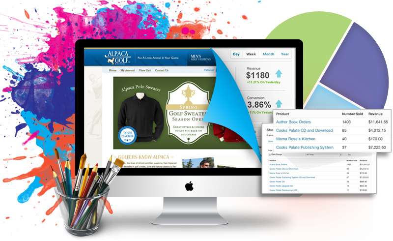 Promotie in ianuarie pentru serviciile de creare a site-urilor web