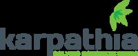 Pompe de beton CIFA de la Karpathia