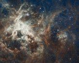 Curs de astronomie: Constelații, nebuloase, galaxii