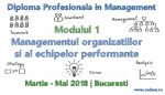 Managementul Organizatiilor si al Echipelor Performante | CODECS