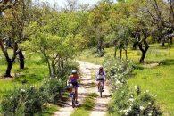 Pregateste-te de primavara – iata cum sa reiei mersul pe bicicleta ca un profesionist