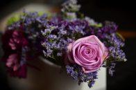O grupă de viitori decoratori florali intră în atelierul Flori de lux în luna aprilie