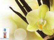 Parfumul de vanilie și beneficiile lui