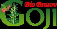GojiBioBrasov – de la pepinieră la plantație de goji în România