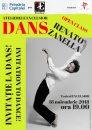 INVITAȚIE LA DANS: Open class cu Renato Zanella, la Teatrul EXCELSIOR