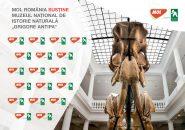 """MOL România susține călătoriile în lumea minunată a științelor naturale, alături de Muzeul Naţional de Istorie Naturală """"Grigore Antipa"""""""