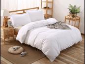 Lenjerii de pat albe- incanta prin simplitate