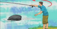Bibanul este unul dintre cei mai populari pești de apă dulce, deoarece este destul de ușor de prins.