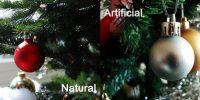 Brad natural sau din plastic? Care e alegerea cu adevărat eco?