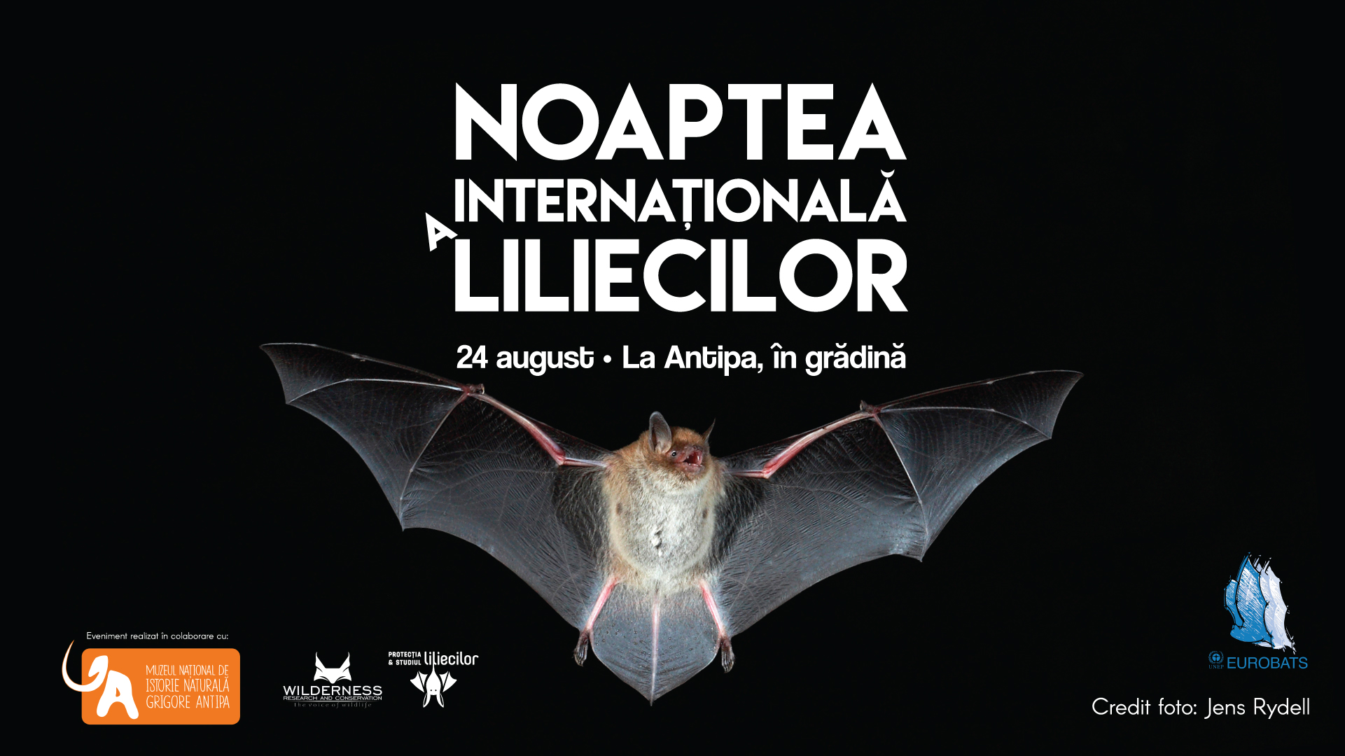 Noaptea Internaţională a Liliecilor la Antipa