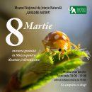 8 Martie la Antipa