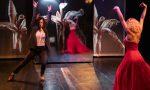 """Micro-turneul Teatrului Apropo cu spectacolul """"Dincolo de oglindă""""continuă online. Spectacolul este oferit gratuit."""
