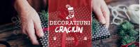 Nou! Decoratiuni de Craciun pentru Floristi pe Megapacking.ro