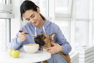 Ce beneficii are orezul in dieta cainilor?