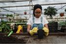 Instrumente profesionale pentru grădina ta: Foarfecă vie profesională și tocătoare lemn